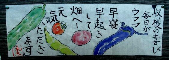 巻紙 野菜
