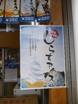 2012伊豆5月3-10.JPG