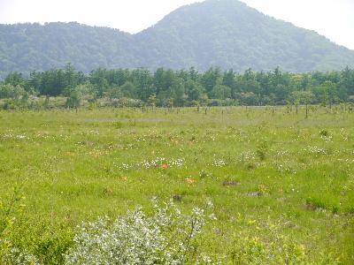 2012日光夏2-16.JPG