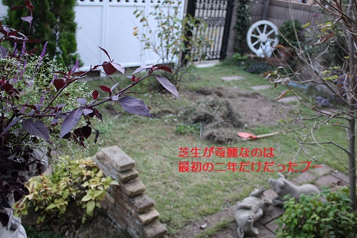 2014_1009_173609-IMG_9161.JPG