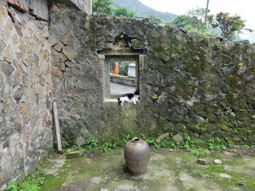 ホウトン 侯 台北 台湾 猫村