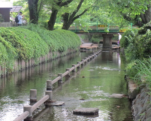 blog sancha river suica .jpg