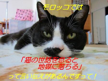 IMG_9114.jpg
