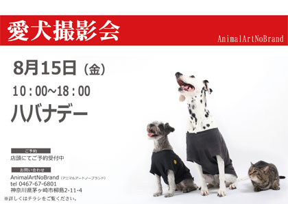 8月15日(金)ハバナデー A3.jpg