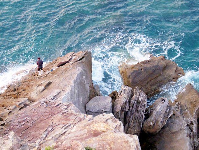 海 猫 ねこ 釣り人 オンライン英会話 スカイプ