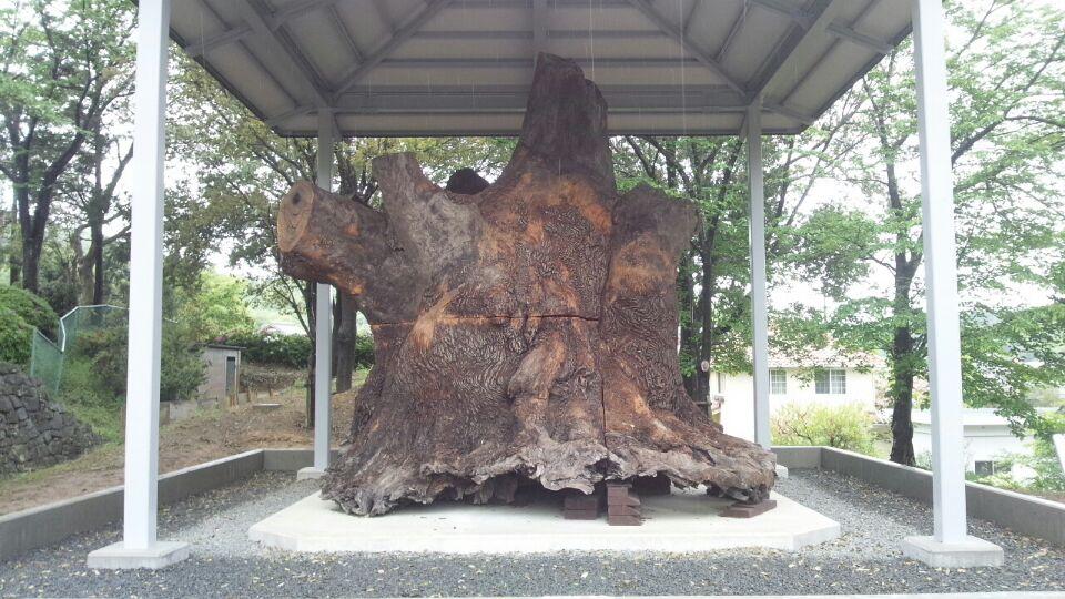 0429 和歌山県立紀伊風土記の丘.jpg