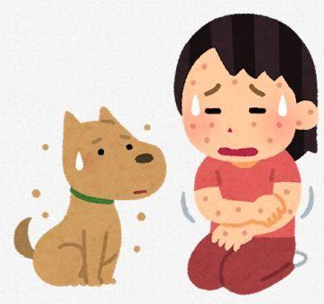 写真 蕁麻疹 鯖 アレルギー