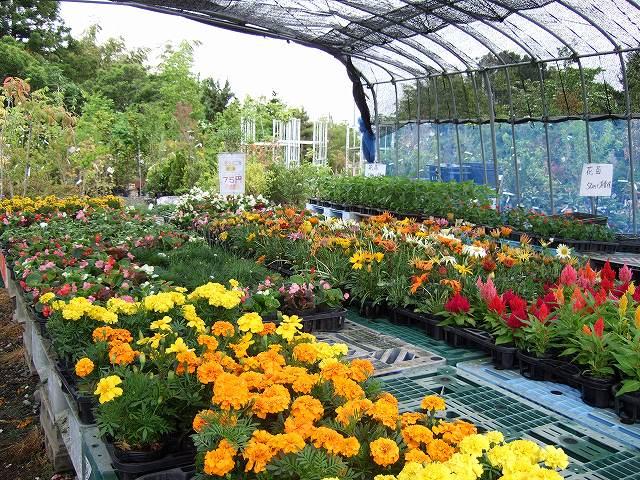 蔵王の明花園