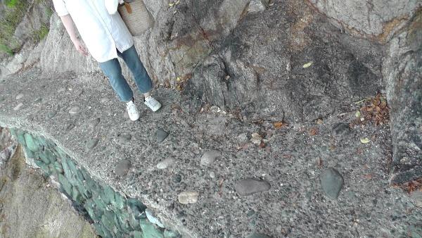 竹島の遊歩道 大きな石が埋め込まれている