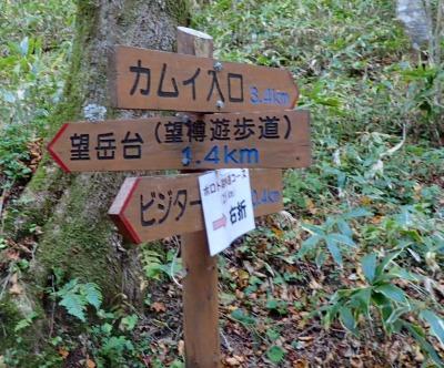 PA211489 14:47望樽遊歩道へ - コピー.jpg