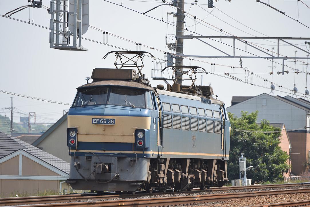 DSC_4273.JPG