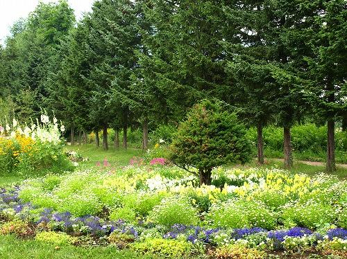 2012紫竹・パレット黄色.jpg