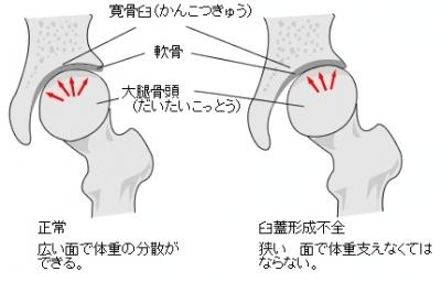 image_8517_400_0.jpg
