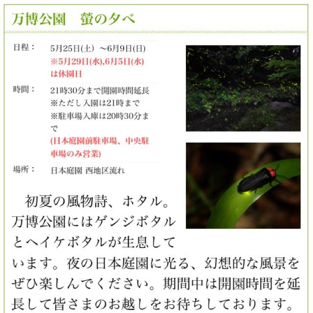 rblog-20130601120205-02.jpg