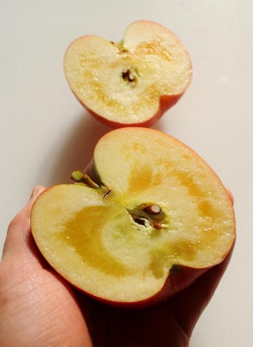 りんご 蜜.jpg