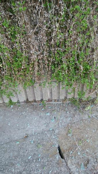道路に散らばるフロントガラスの破片