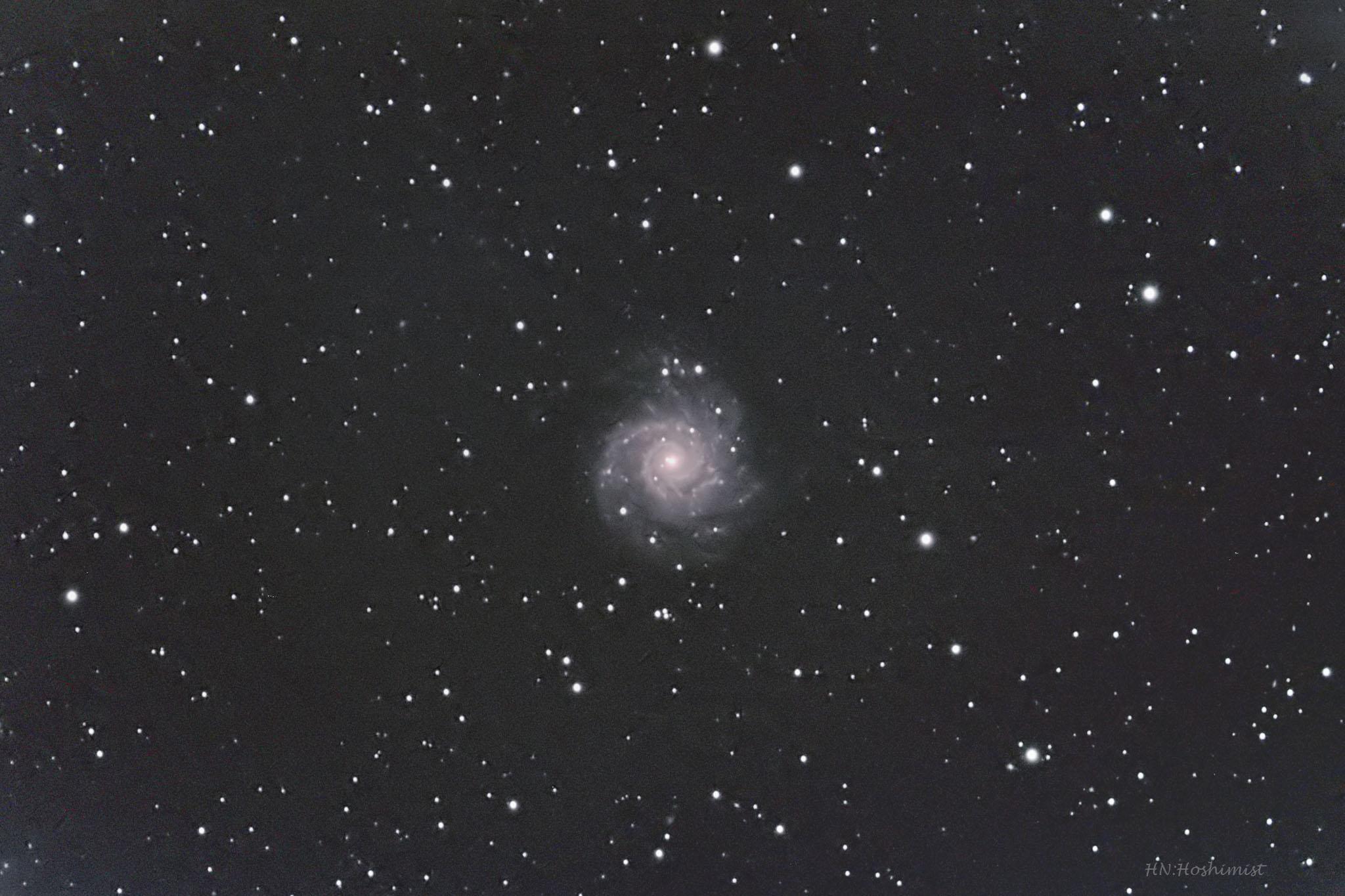 M74 うお座の渦巻銀河 (178MM4対...