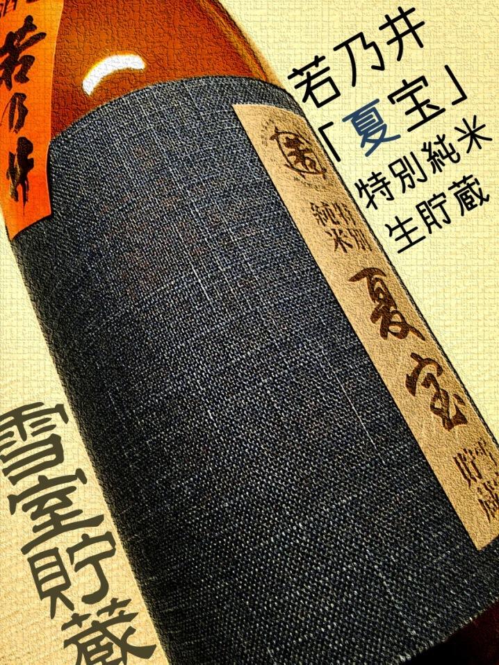 若乃井 夏宝 特別純米生貯 雪室貯蔵