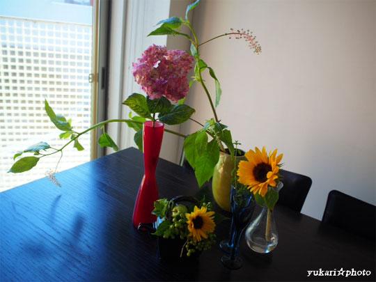 flower2016062601.jpg