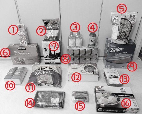 コストコ レポ ブログ 商品 買った 購入 戦利品 買い物