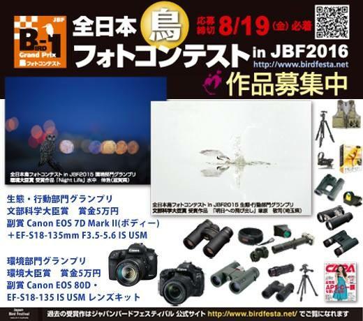 JBF2016B1