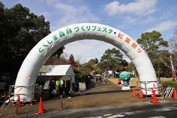 神山森林公園の「紅葉祭り」-3♪