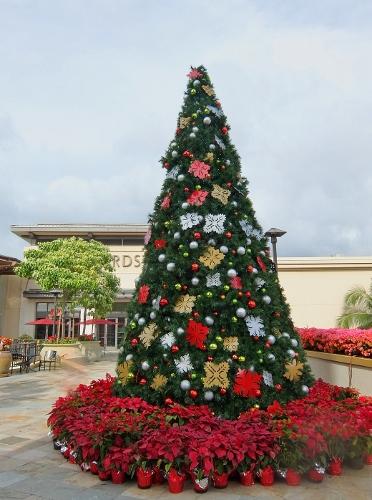 アラモアナ ハワイ ブルーミングデールズ クリスマス