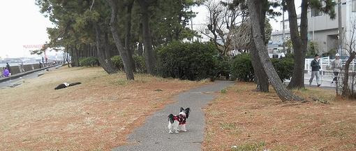 JUN at Fukuura
