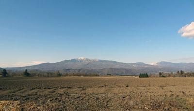 珍しいこの時期の畑の風景