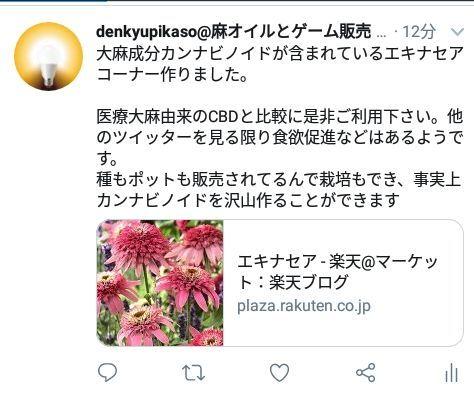 rblog-20190304125657-00.jpg