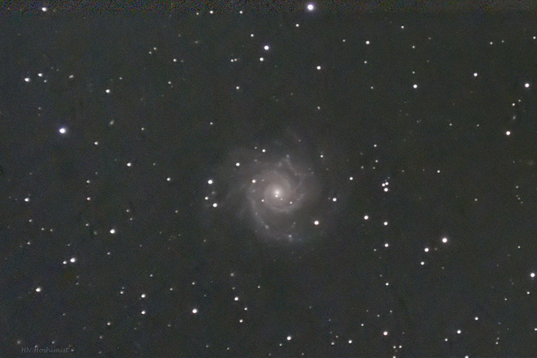 M74 うお座の渦巻銀河 | ホシミ...