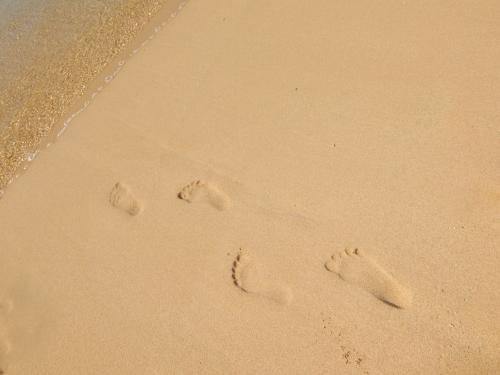 ビーチ ハワイ 海 砂浜