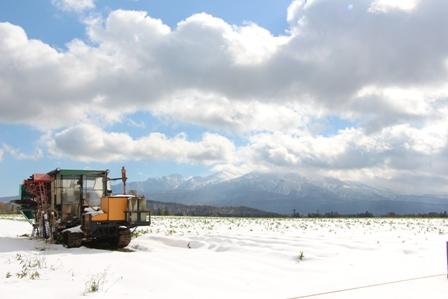 251016初雪01