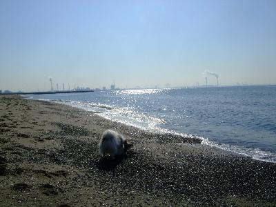 20121月11.JPG