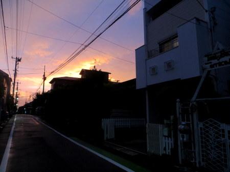 IMG_4129-001.JPG