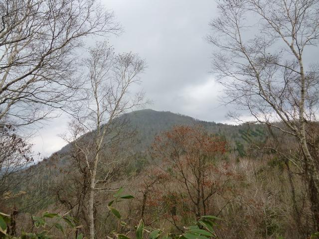 P1310718反射板の山12:36.jpg