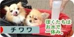 hitoyasumi banner.jpg
