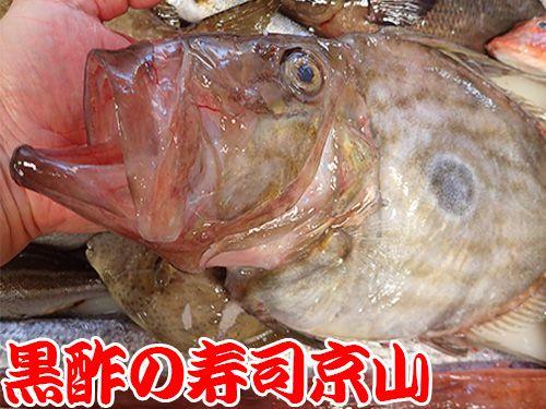 寿司 出前 江東区 高橋