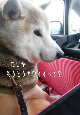 0109夕3.jpg