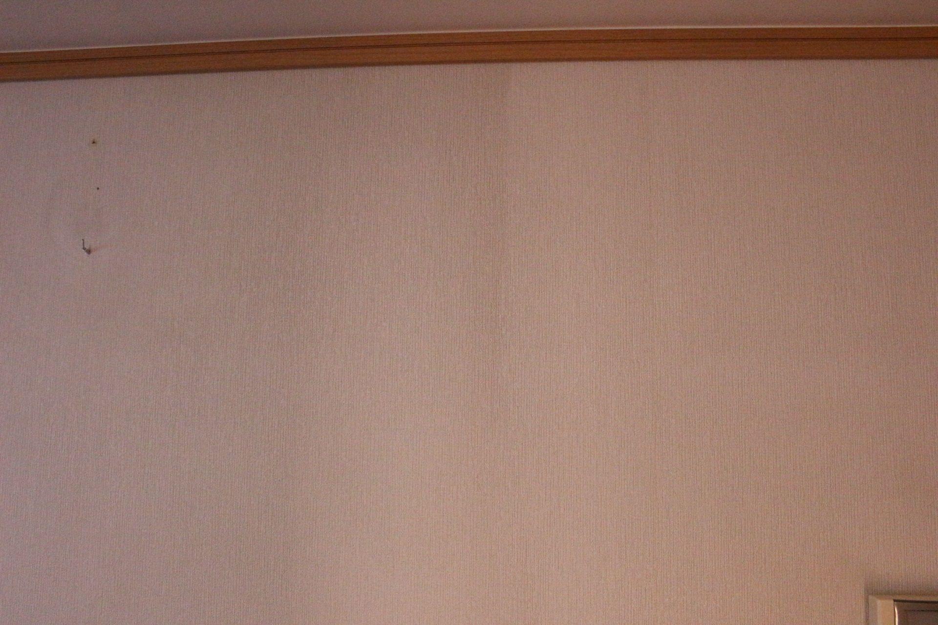 壁紙 クロス の汚れ落としはコレ レックしぼれる のびーるバスクリーナー かずきのblog 楽天ブログ