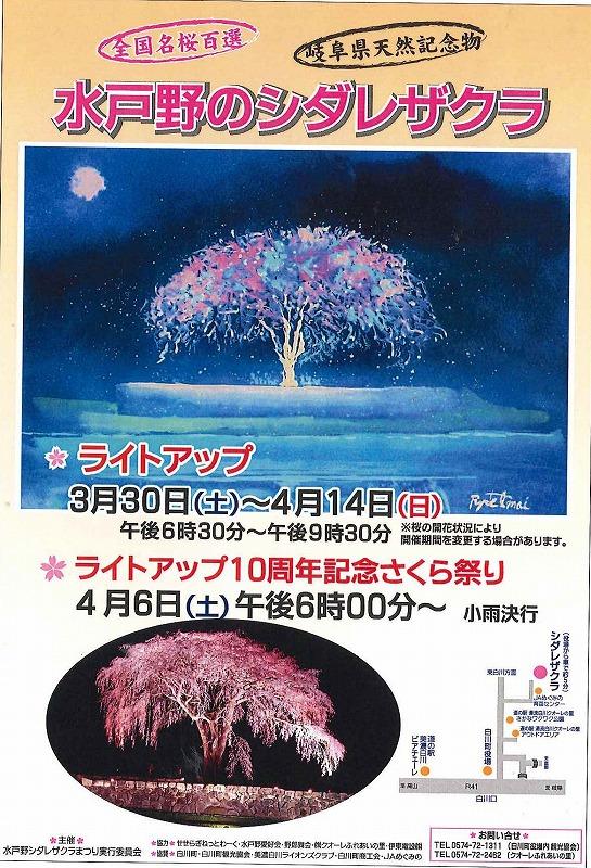 桜ポスター.jpg