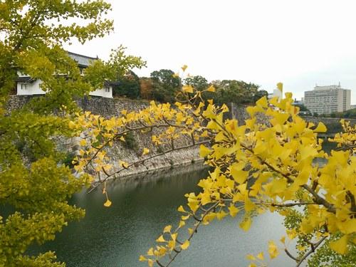 5大阪城 5008jpg.jpg