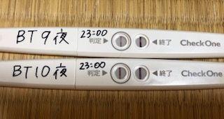 胞 移植 予定 日 盤 出産 胚