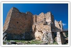 アジュルーン城