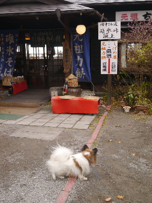 2012軽井沢13.JPG