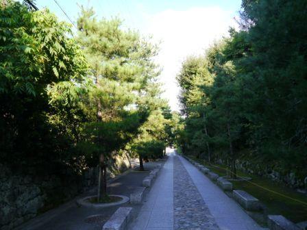 P1050986(参道).jpg
