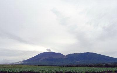 七夕の浅間山とキャベツ