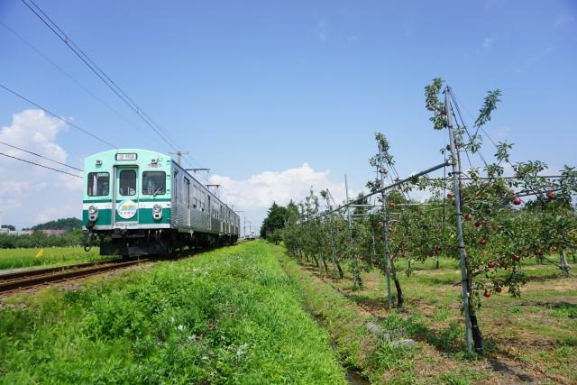 残暑の 弘南鉄道 大鰐線