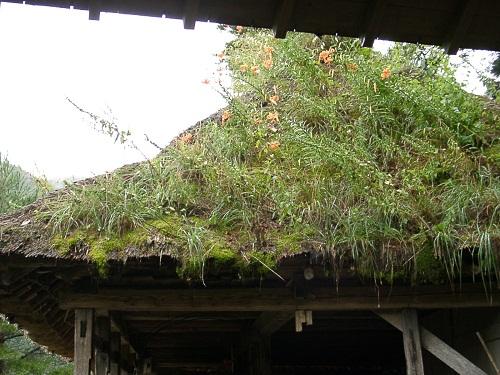 草屋根.JPG
