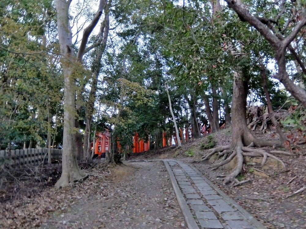 京都 伏見稲荷大社 きつね 旅